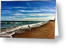 Seagulls At The Beach Greeting Card