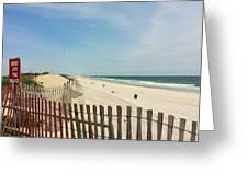 Seagulls Beach Greeting Card