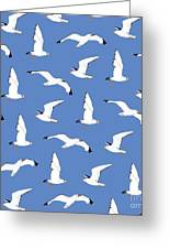 Seagulls Gathering At The Cricket Greeting Card