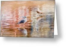 Seagulls - Impressions Greeting Card