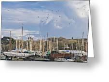 Seagulls Over Mylor Creek Boatyard Greeting Card