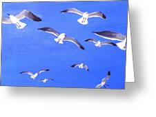 Seagulls Overhead Greeting Card