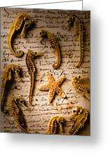 Seahorses And Starfish On Old Letter Greeting Card by Garry Gay