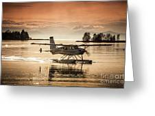 Seair Beaver 1 Greeting Card