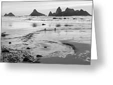 Seal Rock 0169 Greeting Card