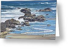 Seal Rock Seascape Greeting Card