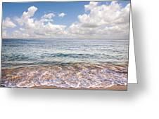 Seascape Greeting Card by Carlos Caetano