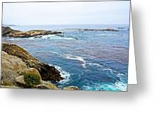 Seascape From Point Lobos State Reserve Near Monterey-california  Greeting Card