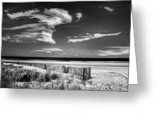 Seascape In Black And White Greeting Card