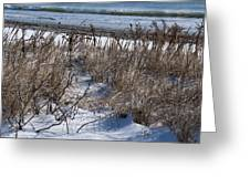 Seascape In Winter Greeting Card
