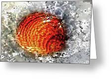 Seashell Art - Square Format Greeting Card