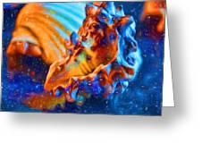Seashells Abstract Greeting Card