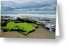 Seaside Greeting Card by Ralph Jones
