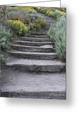 Seaside Steps Greeting Card