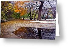Seasons Changing Greeting Card