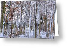 Season's First Snow Greeting Card