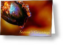 Season's Greetings- Iced Light Greeting Card