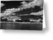 Seasons In Infrared Greeting Card