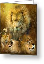 Seasons Of The Lion Greeting Card