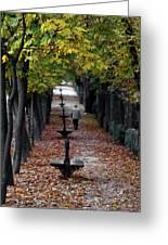 Seasons - Pathway Greeting Card