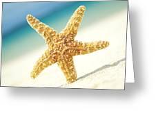 Seastar On Beach Greeting Card