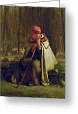 Seated Shepherdess Greeting Card
