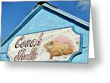 Seawall Seekers Greeting Card