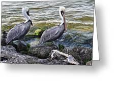 Sebastian Inlet State Park Vii Greeting Card