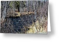 Secluded Brook Greeting Card