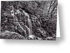 Secluded Falls - Bw Greeting Card