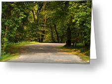 Secluded Forest Road Greeting Card