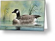 Secluded Repose Greeting Card
