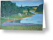 Second Peninsula Cows Greeting Card