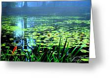 Secret Quiet Pond Greeting Card
