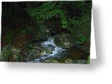 Secret Water Greeting Card by Jim Thomson