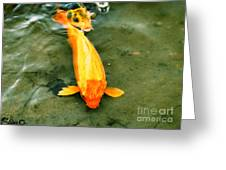 Secrets Of The Wild Koi 11 Greeting Card