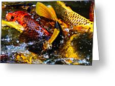 Secrets Of The Wild Koi 2 Greeting Card