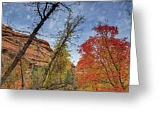 Sedona Fall Colors Greeting Card