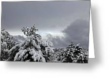 Sedona Skyline In Winter Greeting Card