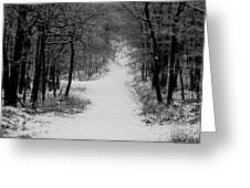 See Where It Leads. Greeting Card