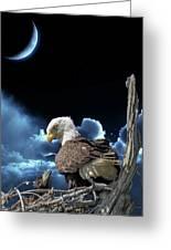 Seeing Eye To Eye Under The Moonlight Greeting Card