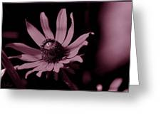 Seeing Life Through Rose-colored Glasses Greeting Card