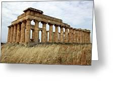 Segesta Greek Temple In Sicily, Italy Greeting Card