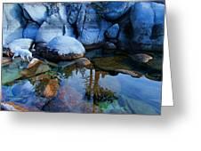 Sekani Rocks Tahoe Greeting Card