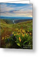 Selah Spring Sunset Greeting Card