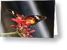 Self Propelled Flower - 2 Greeting Card