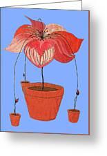 Self-seeding Pot Plants Greeting Card