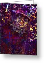 Selfie Monkey Self Portrait  Greeting Card