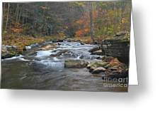 Seneca Creek Autumn Greeting Card