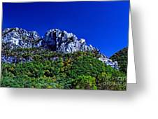Seneca Rocks National Recreational Area Greeting Card by Thomas R Fletcher